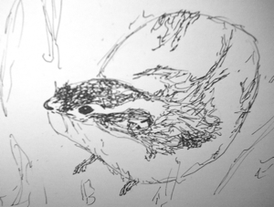 felt tip, sketch of a lemming