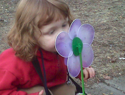 the wee girlie, closely inspecting her new pinwheel