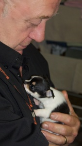 My Dad, just home from work, holding Alice our Chihuahua puppy.