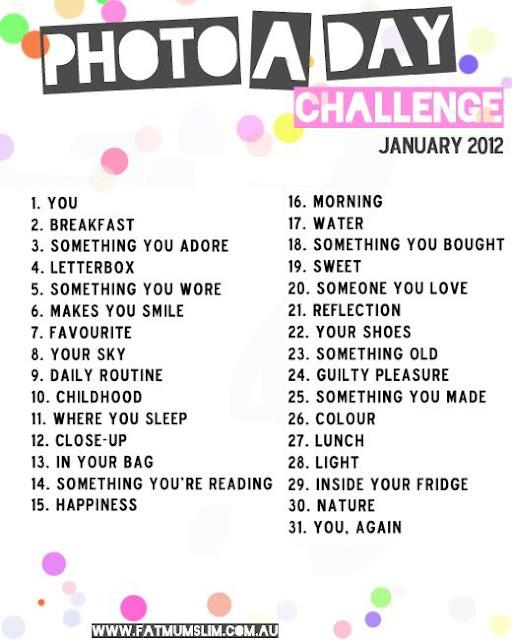 photo a day challenge for january