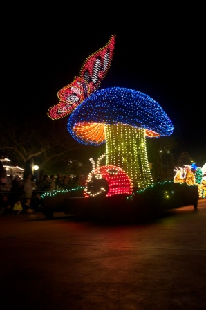 Loved the electrical parade!