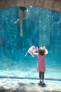 Lily-Ann loved watching the free divers in the oyster bed.